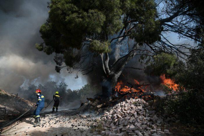 Φωτιά ξέσπασε στον Πόρτο Γερμενό