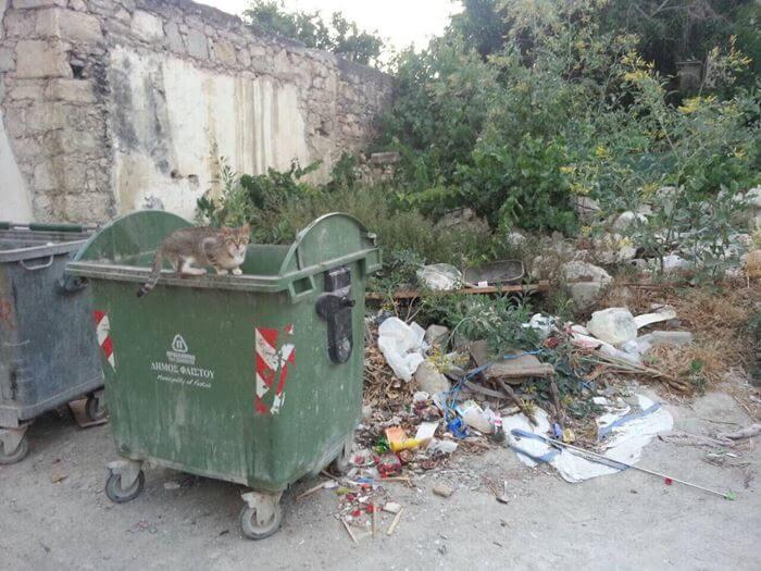 Ηλικιωμένη πέταξε 25.000 ευρώ στα σκουπίδια !