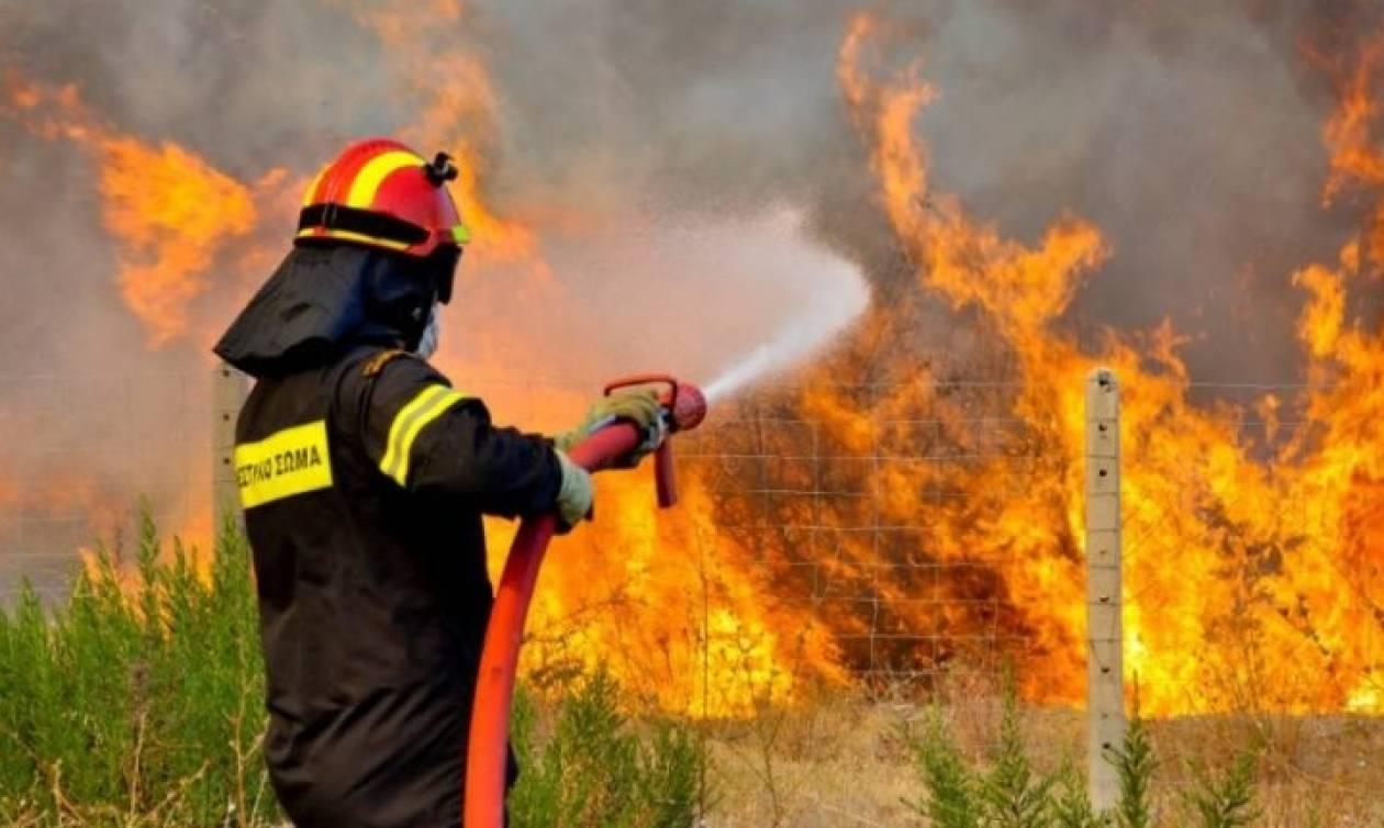 57 δασικές πυρκαγιές σ' ένα 24ωρο
