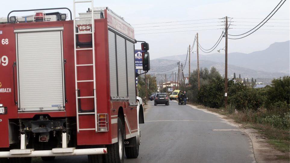 EΚΤΑΚΤΟ: Φωτιά στα Στύρα Ευβοίας