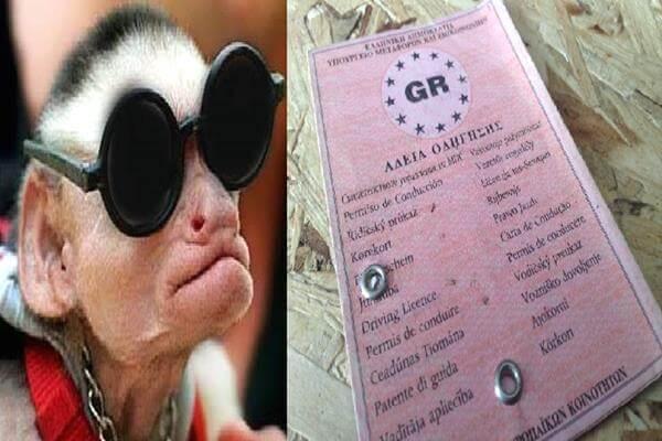 Εξαρθρώθηκε σπείρα που έδινε μαϊμού διπλώματα