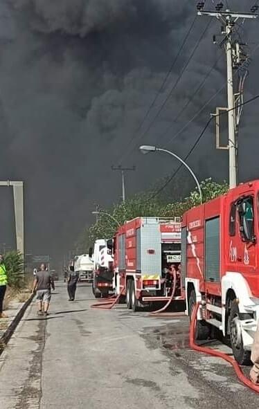 Θρήνος στην Αιτωλοακαρνανία - Κατέρρευσε την ώρα της μάχης με τις φλόγες