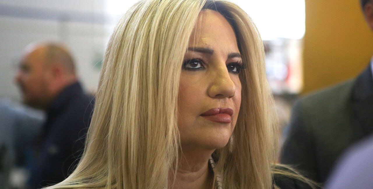 Φώφη Γεννηματά:  Απαράδεκτη στάση του Ερντογάν απέναντι στην Φον Ντερ Λάιεν