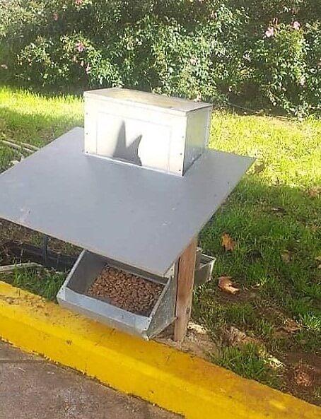 Ταΐστρες και ποτίστρες για τα αδέσποτα στις 5 Δημοτικές Κοινότητες από τον Δήμο Πειραιά