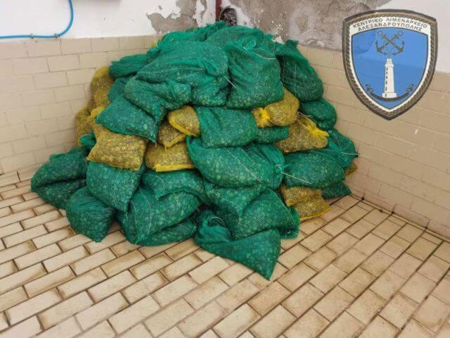 Συλλήψεις για λαθρεμπορία ποσότητας οστράκων με σκοπό την πώληση - εμπορία τους στην Αλεξανδρούπολη