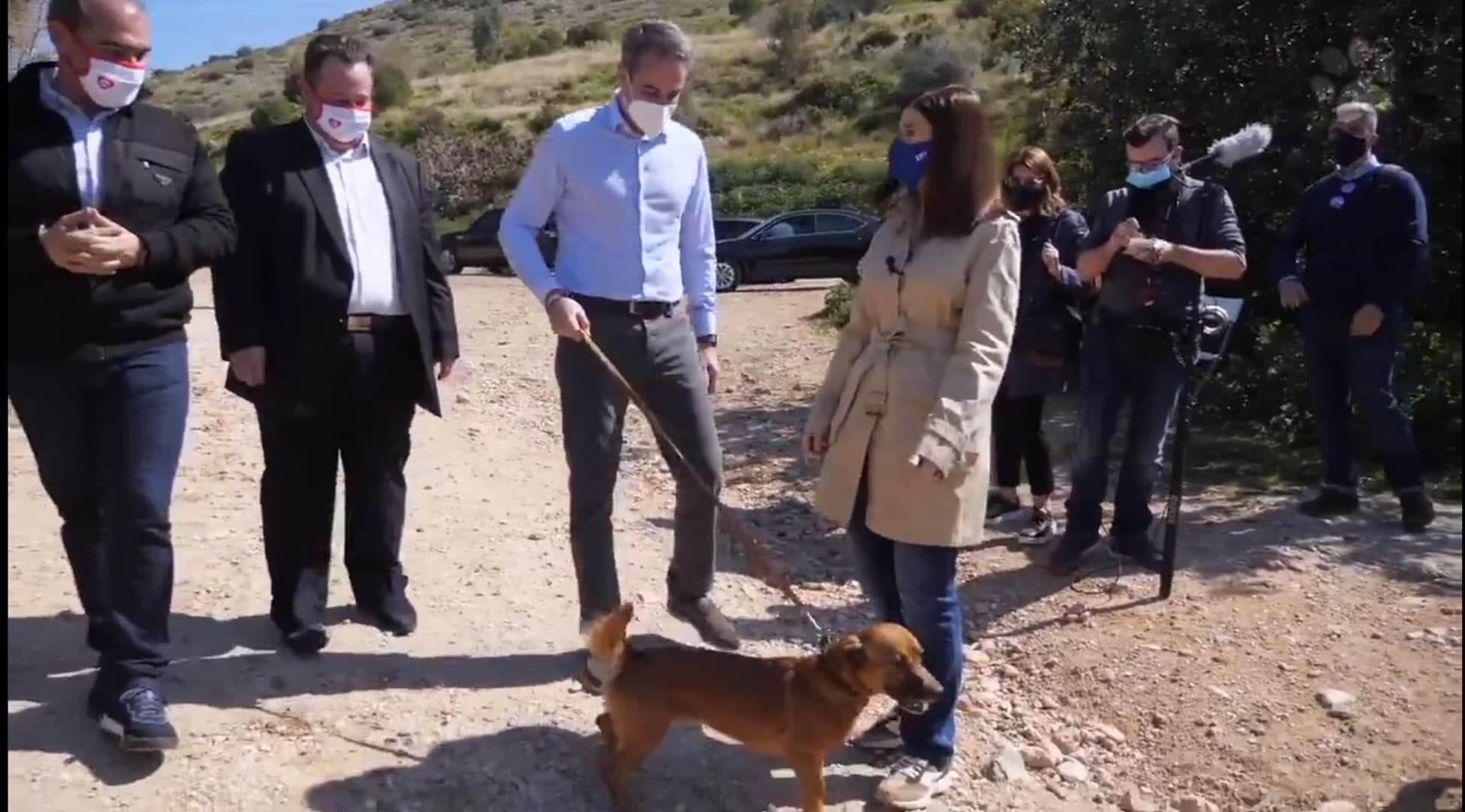 Eπίσκεψη του Κυριάκου Μητσοτάκη στο καταφύγιο αδέσποτων ζώων στην Ηλιούπολη