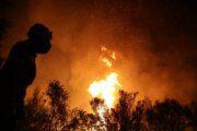 Διοργάνωση συναυλίας για υποστήριξη των πυρόπληκτων Αφιδνών